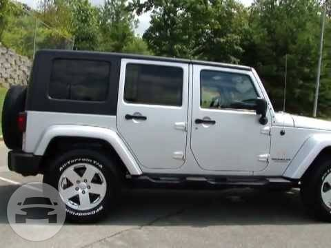 on in with wrangler stunning design style home designing inspiration jeeps jeep attractive cheap without doors