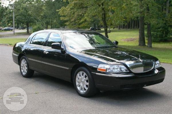 Luxury Sedan Lincoln Town Car Silver Strusser S Limo Bookings