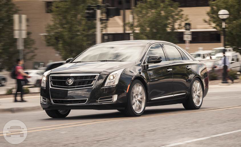 Brand New Cadillac XTS Sedan  / Boston, MA   / Hourly $0.00