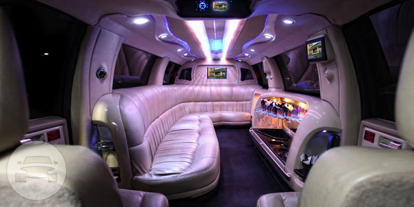 FORD EXPEDITION STRETCH LIMO Limo / Kissimmee, FL   / Hourly $0.00