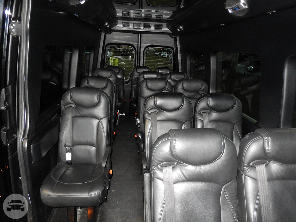 Executive Mercedes Sprinter Van Style 1 (seats up to 16 passengers) Van  / San Francisco, CA   / Hourly $224.00
