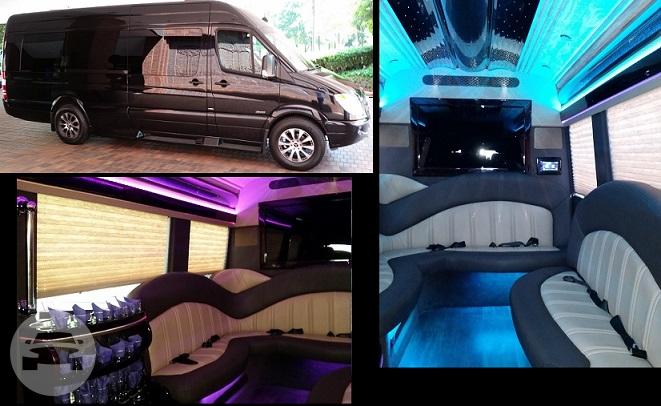 Seater Passenger Mercedes Benz Sprinter Limo Bus Atlanta VIP - Mercedes benz limo bus