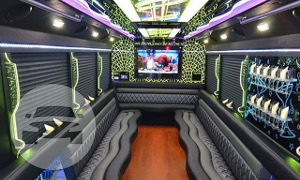 JEWEL FORD F450 Luxury Party Bus Party Limo Bus  / Plymouth, MI 48170   / Hourly $0.00