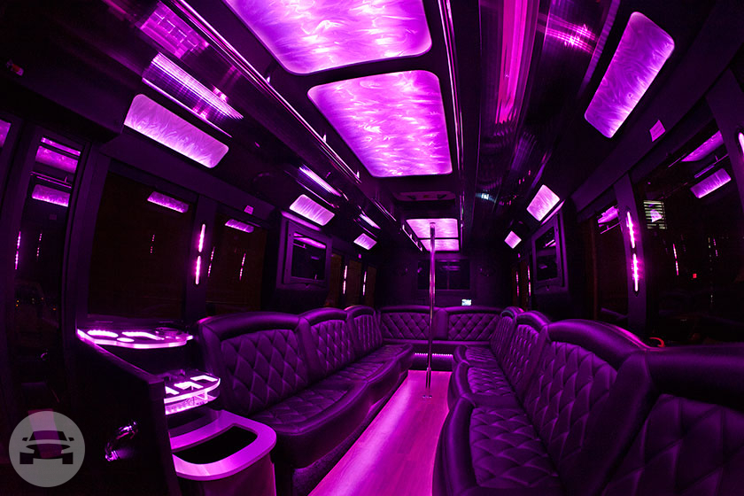 The Amazing 18 pax Party Bus Limo Party Limo Bus / Detroit, MI   / Hourly $0.00