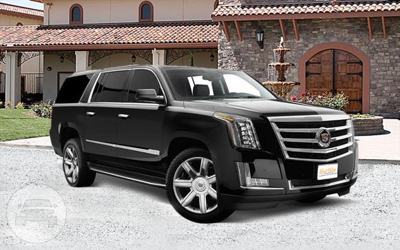 CADILLAC ESCALADE ESV SUV | Best Way Limousines: online reservation