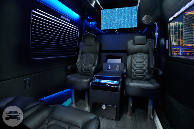 Mercedes Sprinter Executive Van Van / Union City, CA   / Hourly $125.00