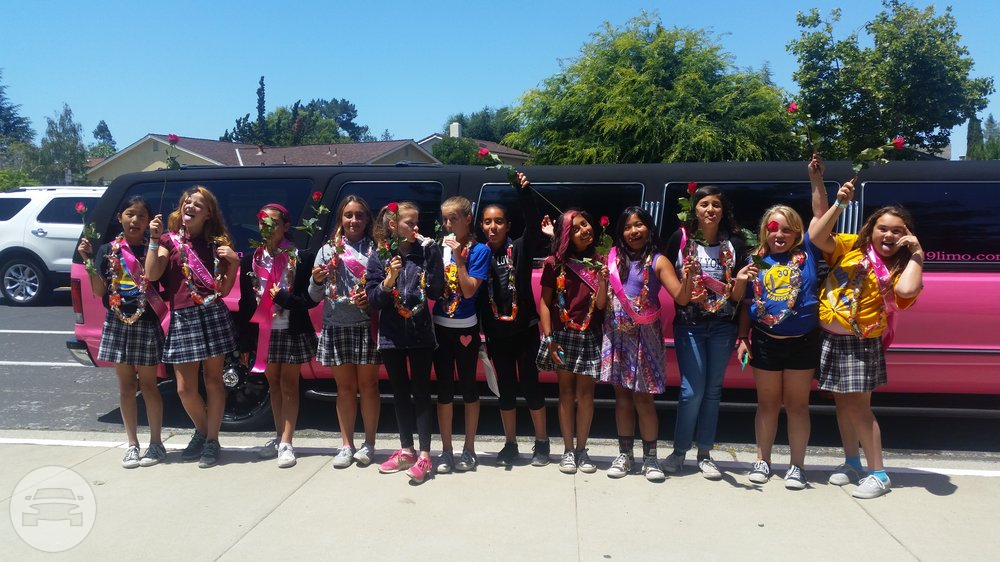18-24 Passenger Pink Stretch Excursion Tuxedo Limousine Limo / Morgan Hill, CA   / Hourly $0.00