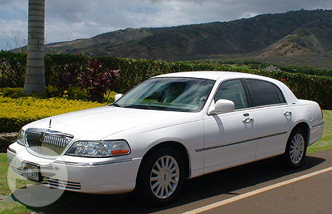 Lincoln Town Car Sedan White Paul Limo Service Milpitas Online