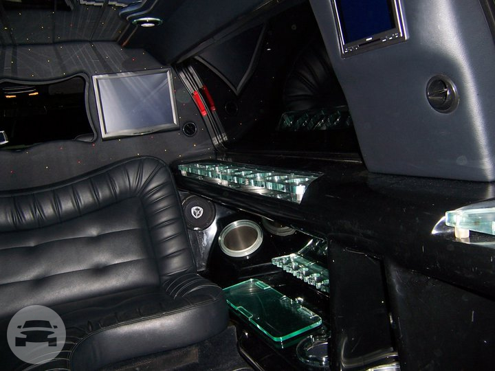 Black Ford Expedition Limo  / Clio, MI 48420   / Hourly $0.00