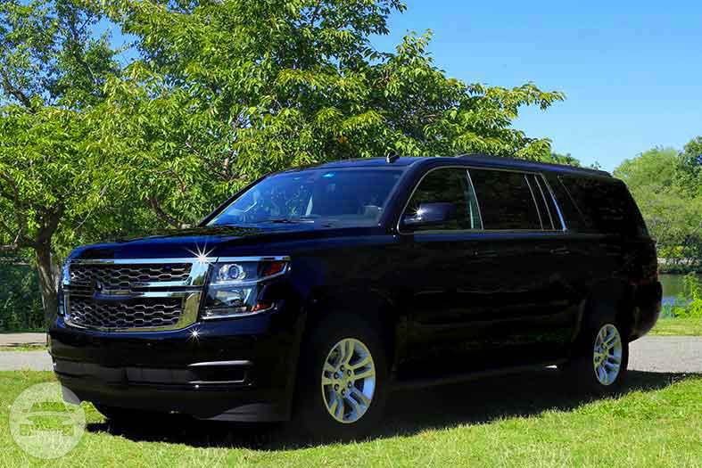 CHEVY SUBURBAN SUV  / La Jolla Ranch, CA 93622   / Hourly (Other services) $75.00  / Airport Transfer $75.00