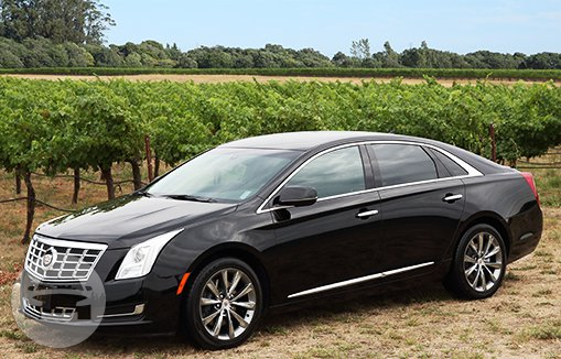 CADILLAC XTS Sedan  / Napa, CA   / Hourly $0.00