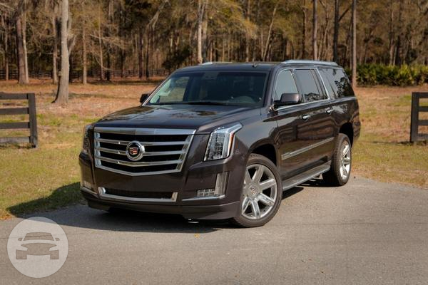 Cadillac Stretch Esv Extended Sport Vehicle Eilat