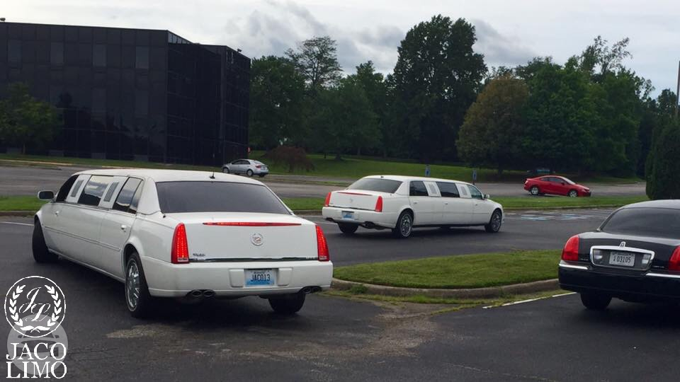 Cadillac Stretch Limousine Limo / Louisville, KY   / Hourly $0.00