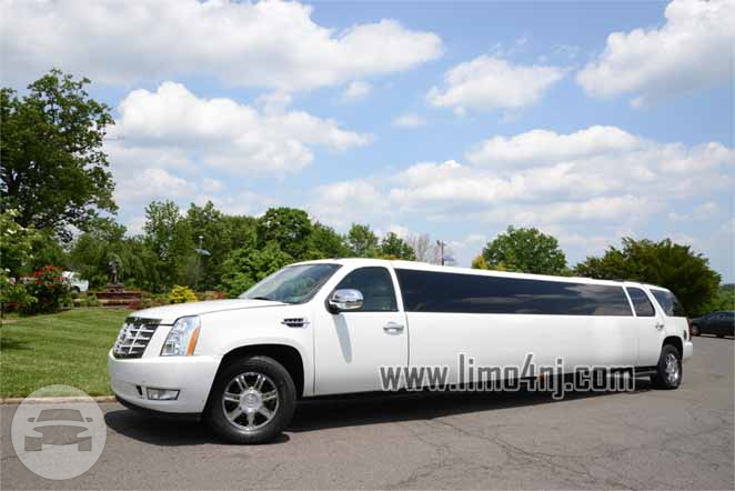 how to get limousine plates in nj